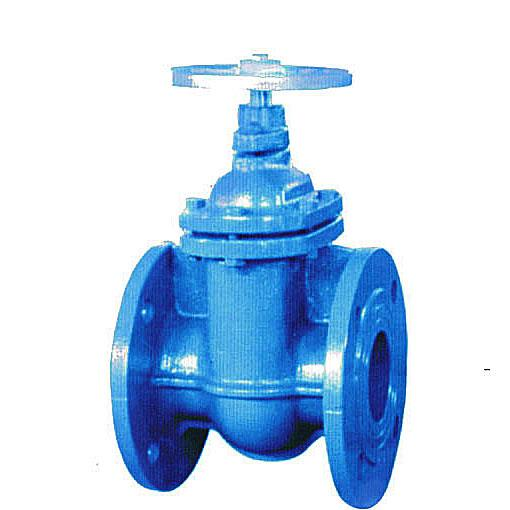 DIN cast iron gate valve, Flanged, Flat body, NRS, Flanged,  PN10