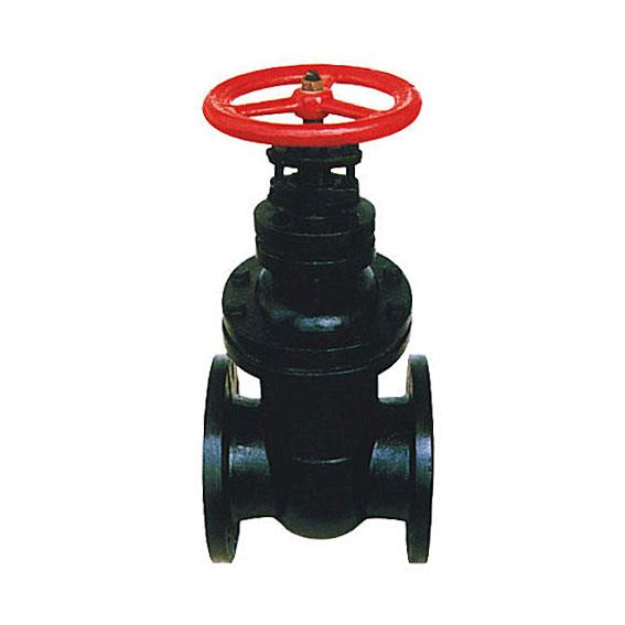 BS 5163 cast iron wedge gate valve